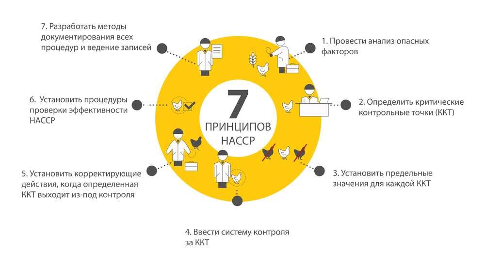 7 главных принципов ХАССП